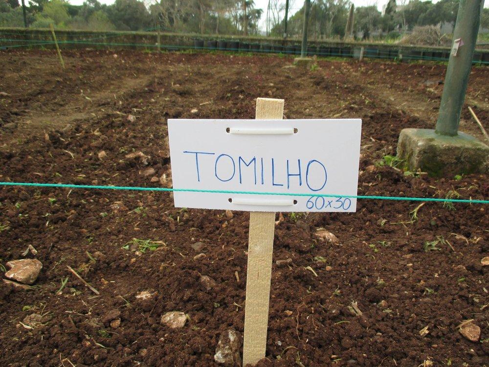 Formaçao Prática Agrícola.jpg