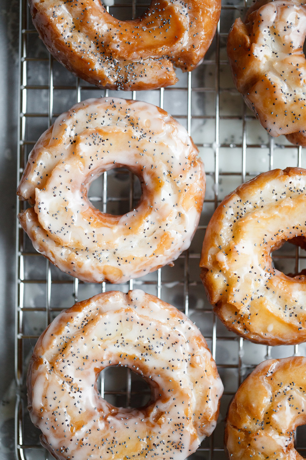 Lemon Poppy Seed Old Fashioned Donuts - Now, Forager - Teresa Floyd.jpg