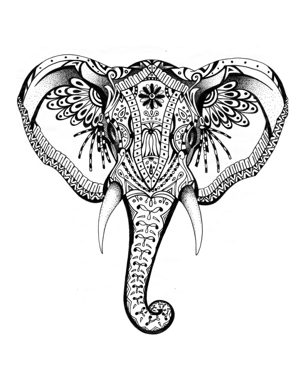 Elephante.jpg