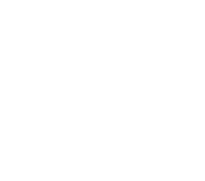 Wedding & Event Planning: Durham, NC