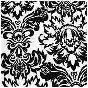 Black and White Brocade