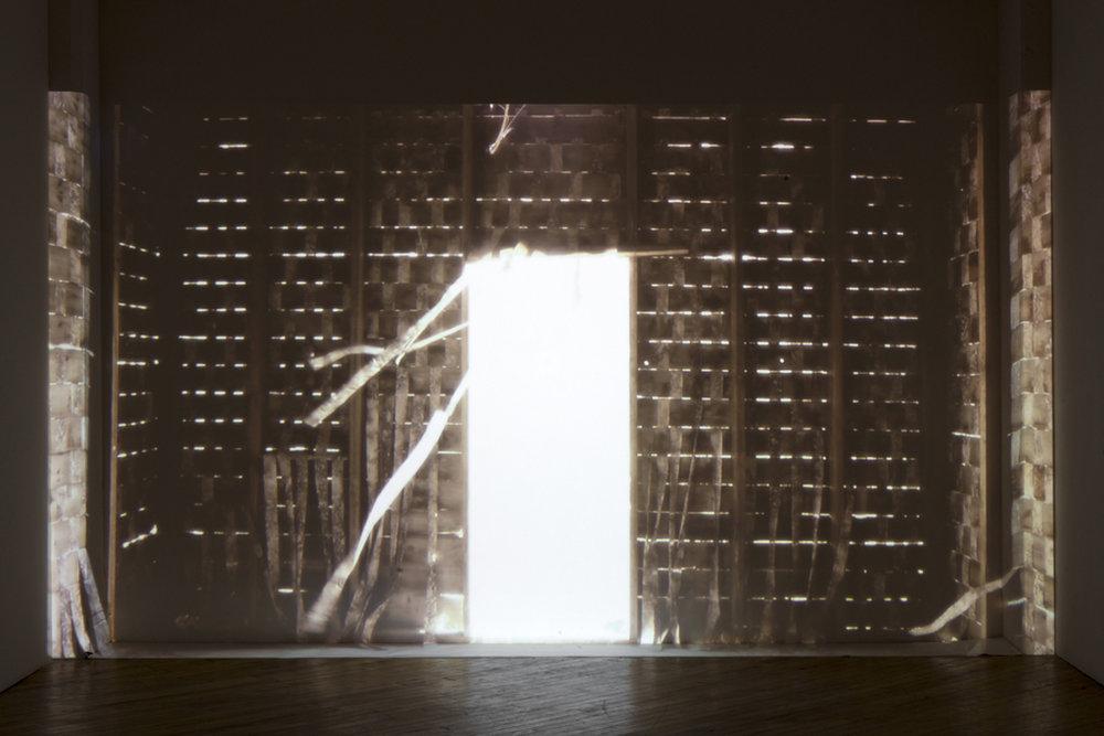 'Disturbance', video installation