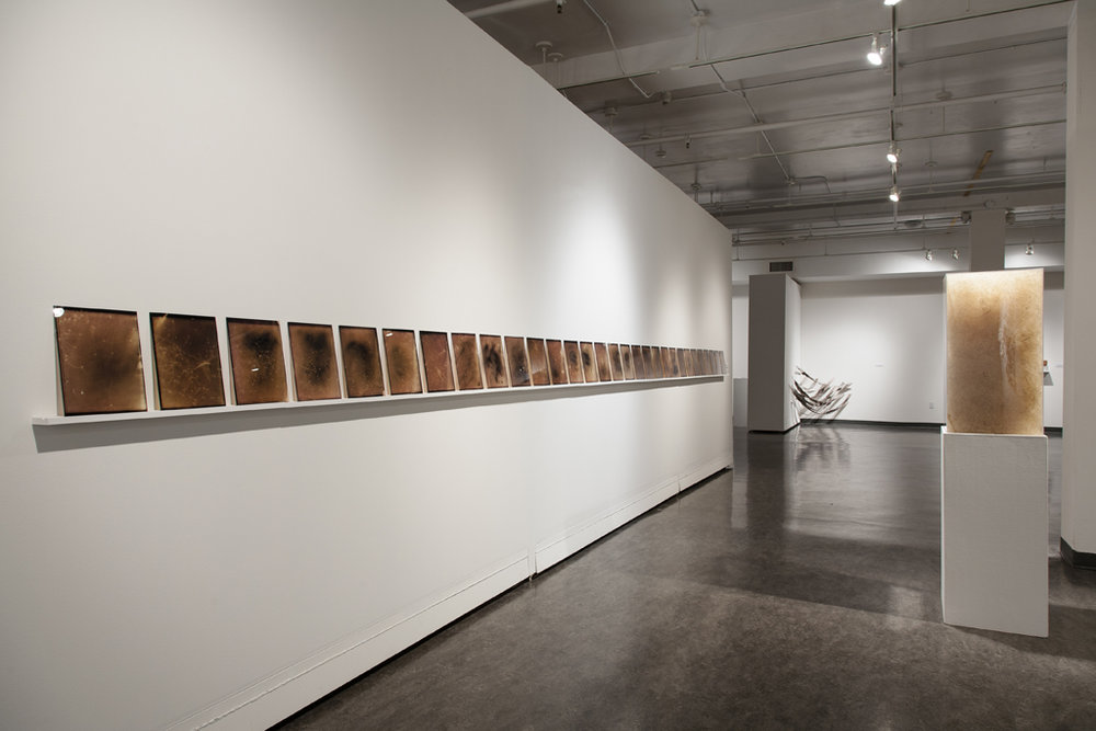 Installation view (photo by Kevin Bertram)