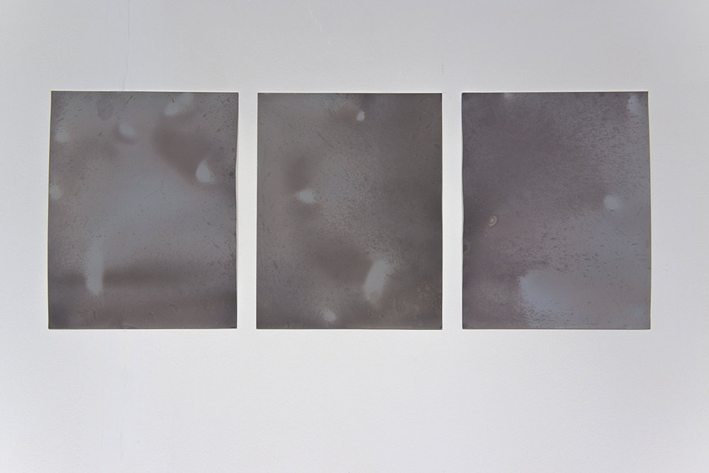'Littoral Contact', lumen prints on photographic paper (photo by Paola Bernardelli)