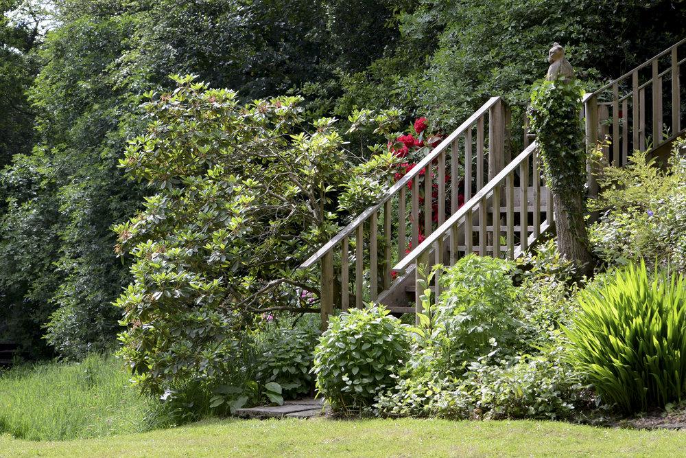 Unposted - Garden 1  copy.jpg
