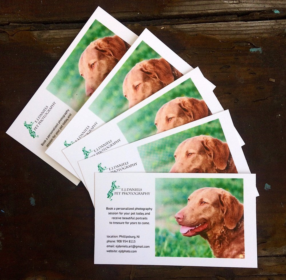 Business Cards Galore — E.J.Daniels Pet Photography