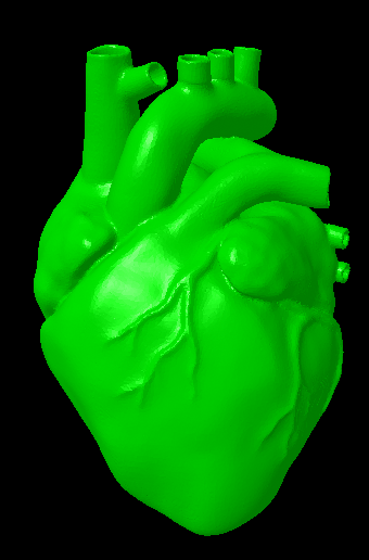 Neon green heart 3D model.png