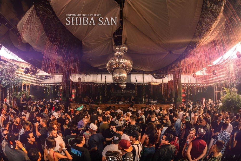 Shiba San / June 23