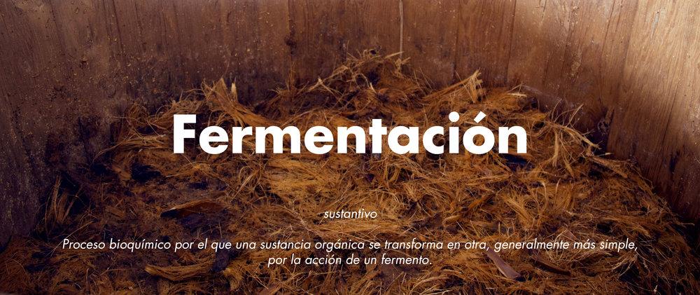 fermentacion.jpg