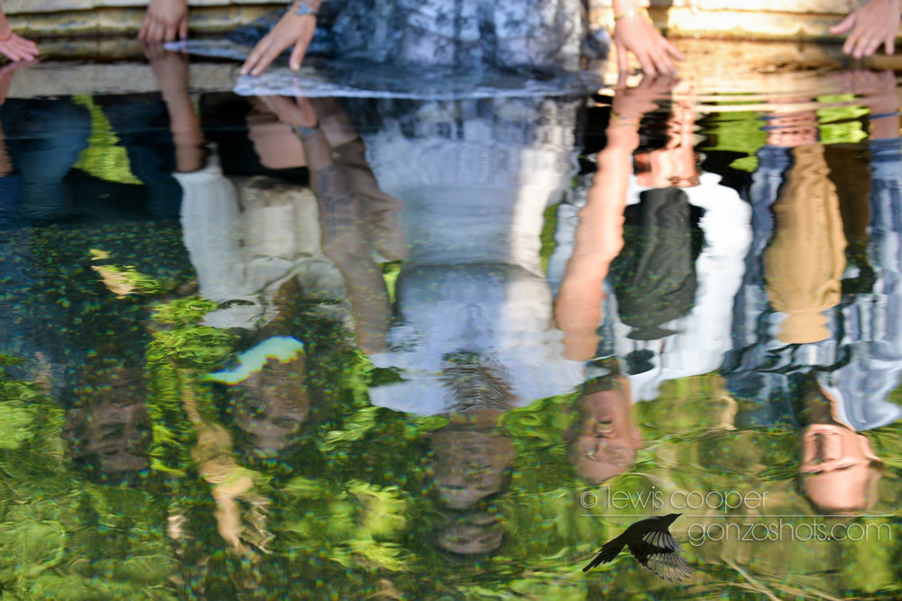 LET-THEM-ROAR-Hot-Springs-Reflection.jpg