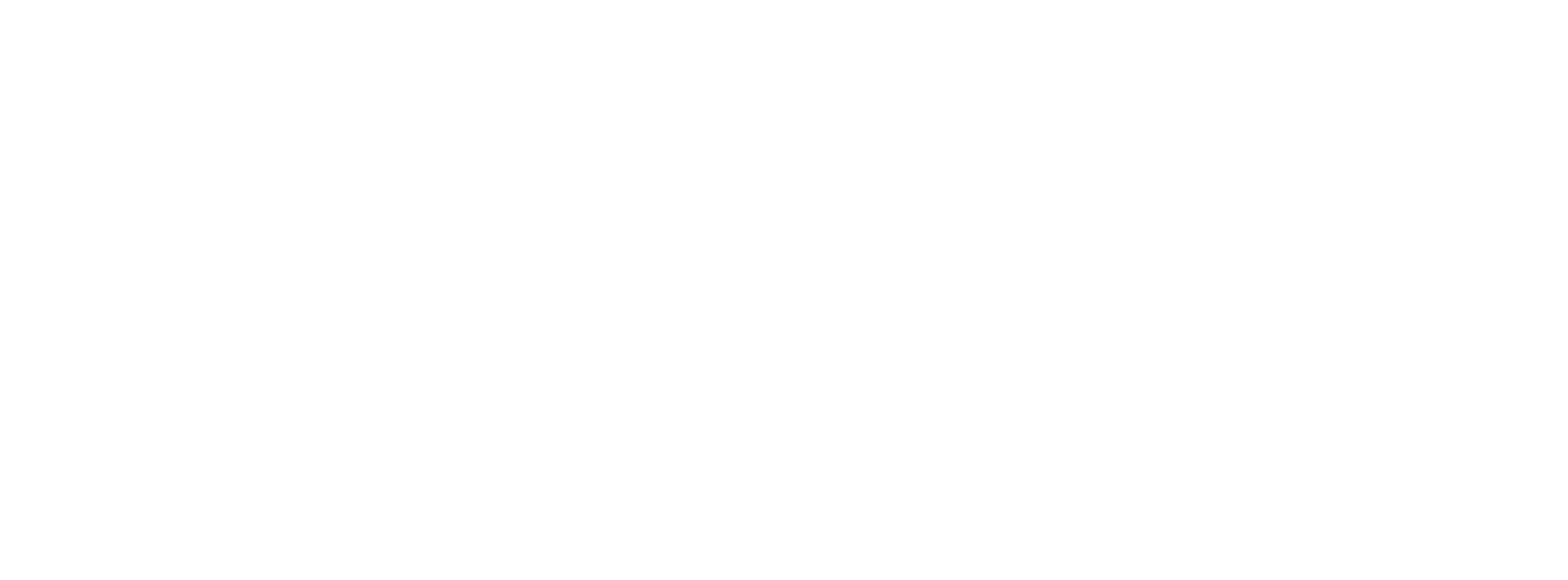 Annette Ferraro Photography & Video