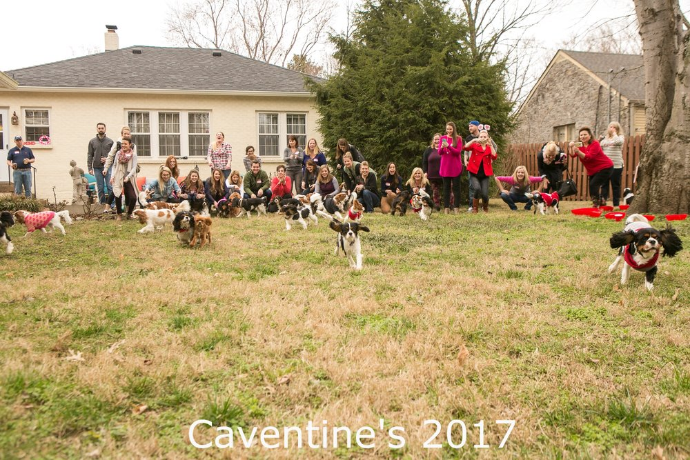 CaventinesPawty_MandyWhitleyPhotography217.jpg