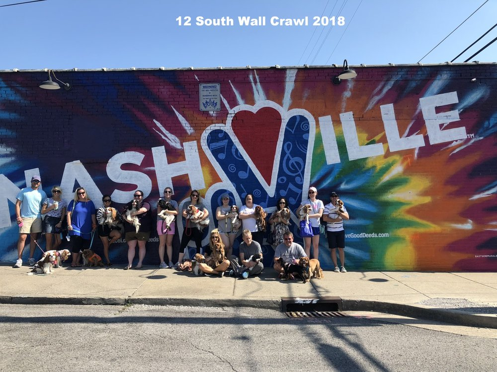 12 South Wall Crawl 1 .jpg