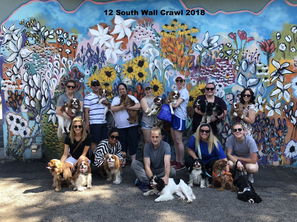12 South Wall Crawl 3.jpg