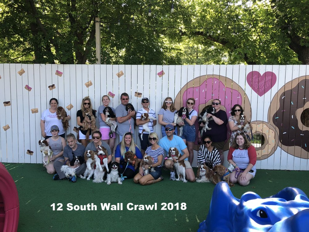 12 South Wall Crawl 2 .jpg