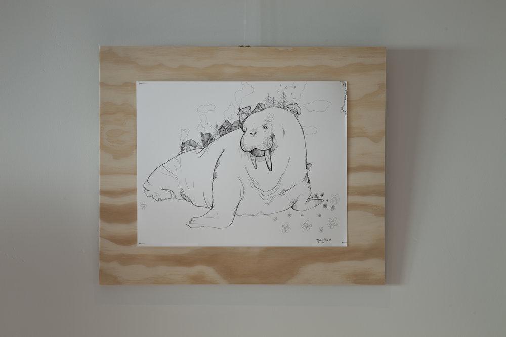 Illustration of walrus