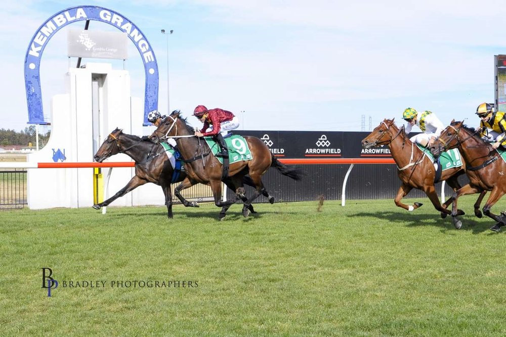 Sky Boy's debut win before Canterbury then Flemington