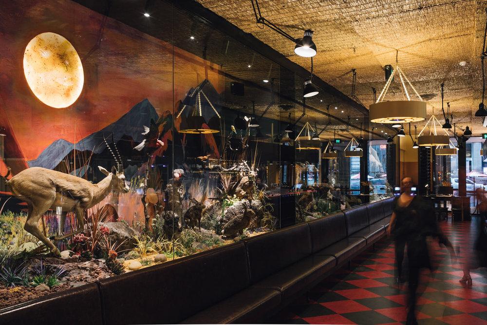 Natural History Public Bar