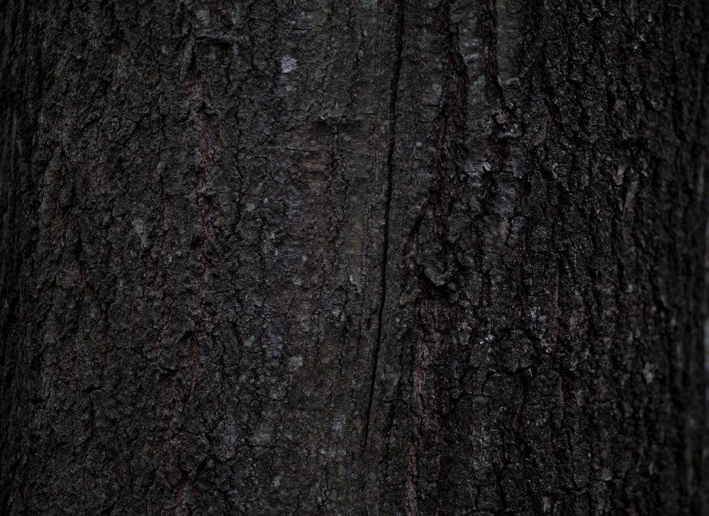 NANAMICA-BDGASTORE-5.jpg