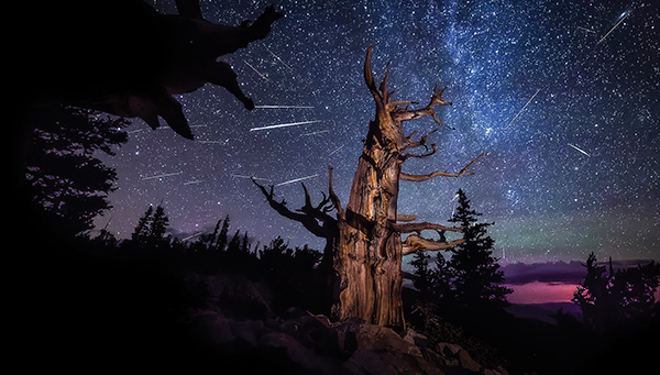 Meteor showing over Great Basin National Park. Photo by K. Carroll.