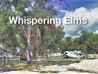 whisperingelms.jpg