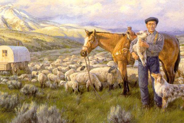 sheepherder.jpg