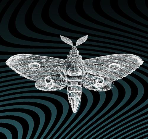 Moth Pass II.png