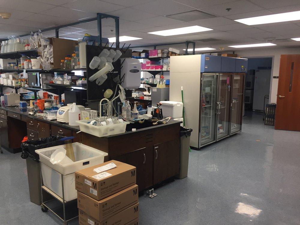 UNC Med B Lab 1.jpg