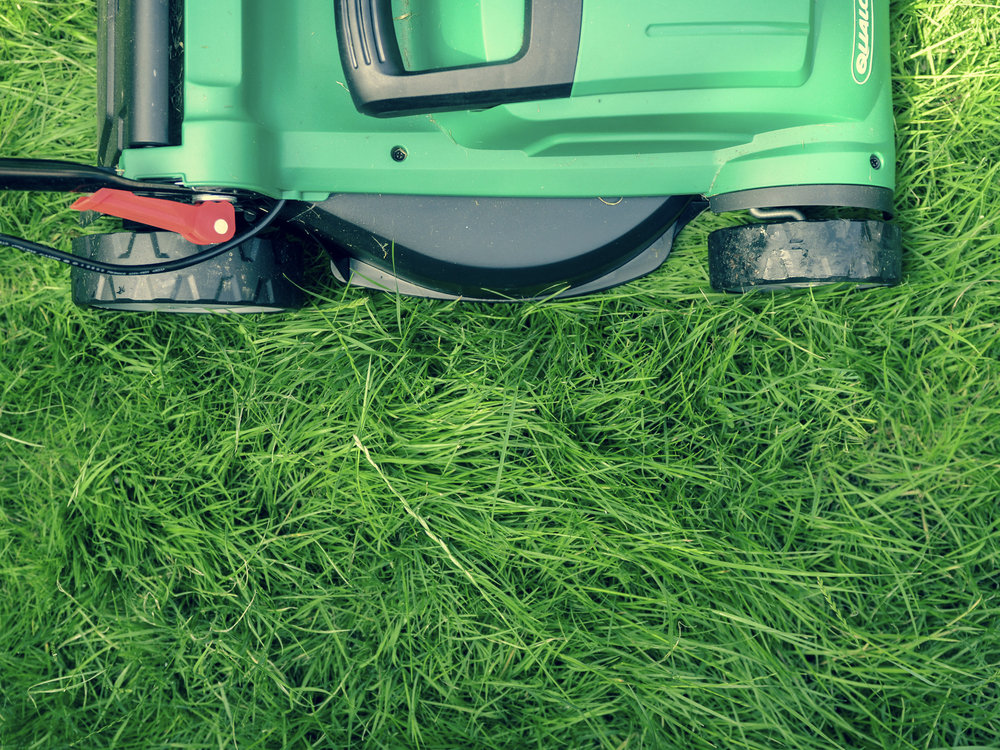 Lawns: A Troubled Past - How the humble lawn had an impact on American expansion.