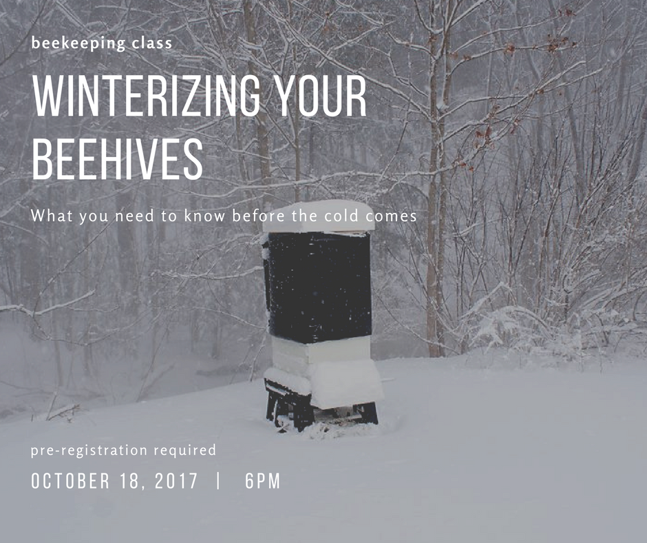 beekeeping class-WINTER.png