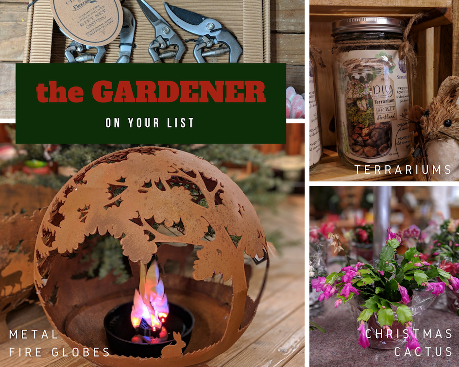 This  fire globe  is my favorite thing in the store! We have a few styles and sizes, and they are all amazing. Beautiful  tool sets  are a great gift that gardeners don't buy for themselves. More of a DIYer?  Terrarium kits  are fun and easy. And  Christmas cactus . Because.