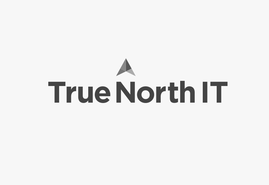 cz-design-logo-design-true-north-it.png