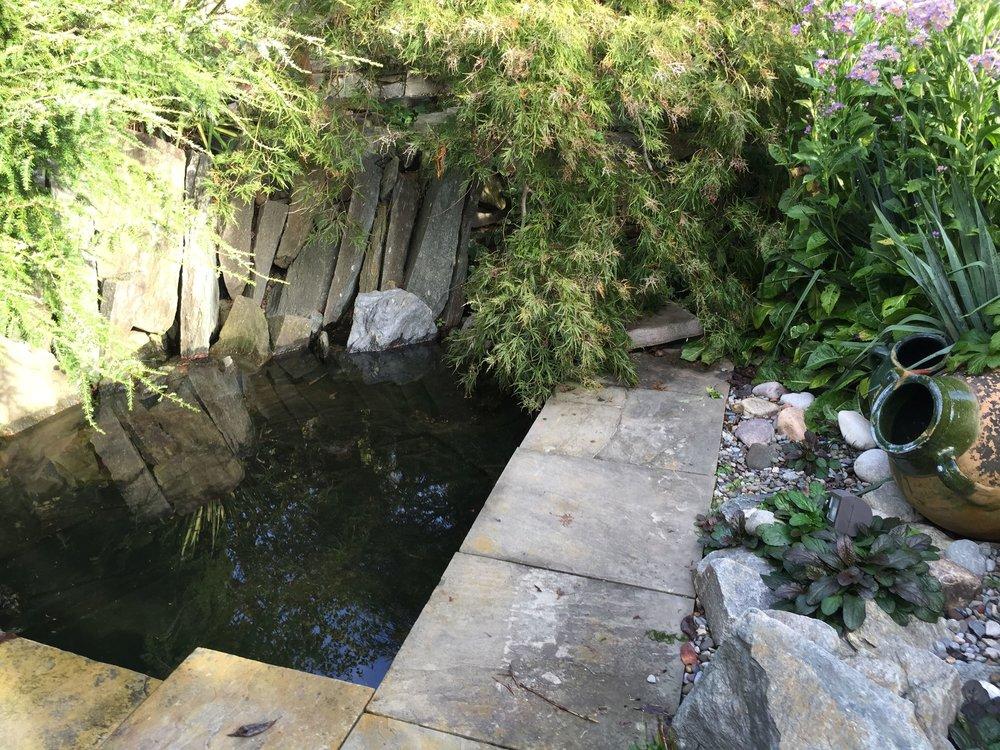 WATER--2015-10-10 09.04.17.jpg