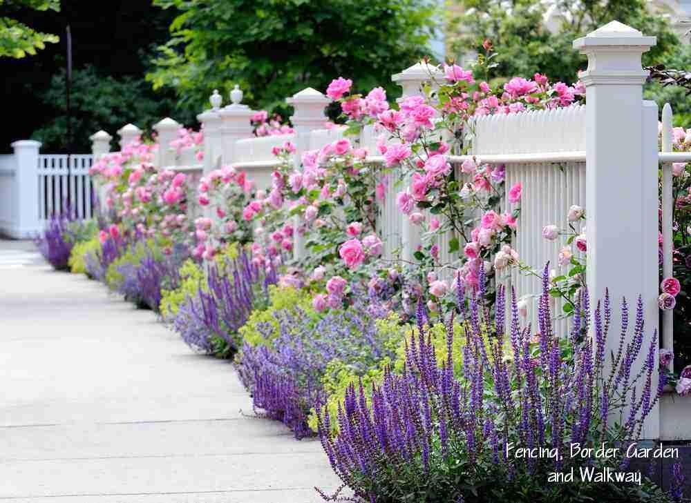 08-Fence-flowers.jpg