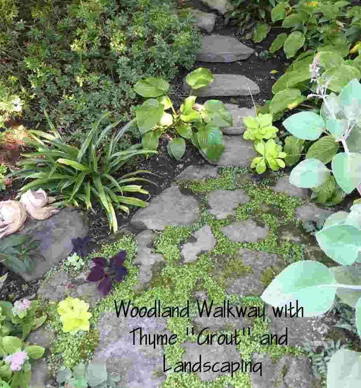 15-Stones in woods.jpg