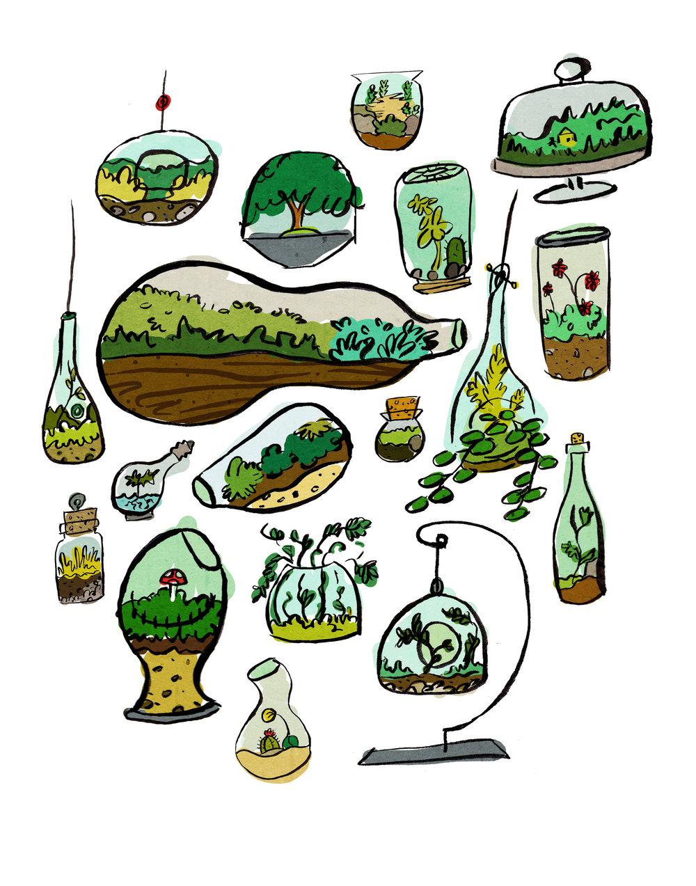 terrariums 11x14.jpg
