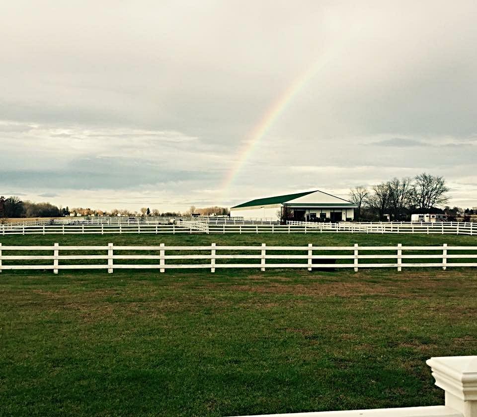 rainbowpic.jpg