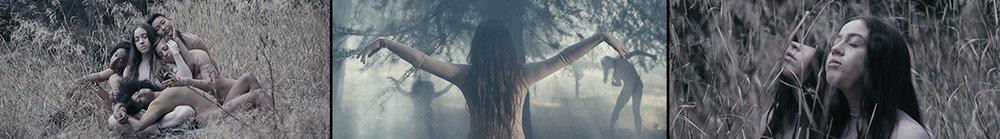 MYSTERY | CROW (FKA SOL)