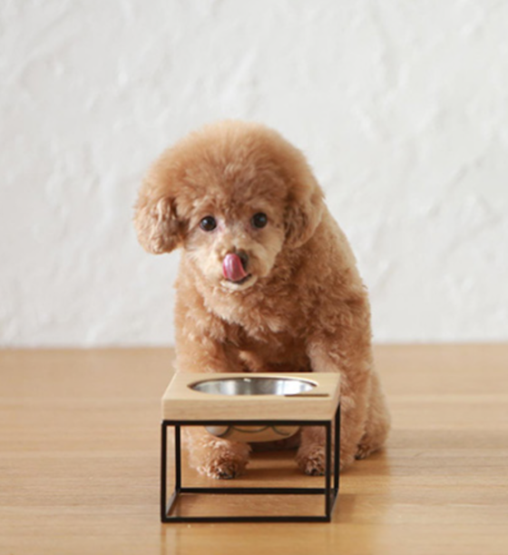 S-MOD for smaller dogs