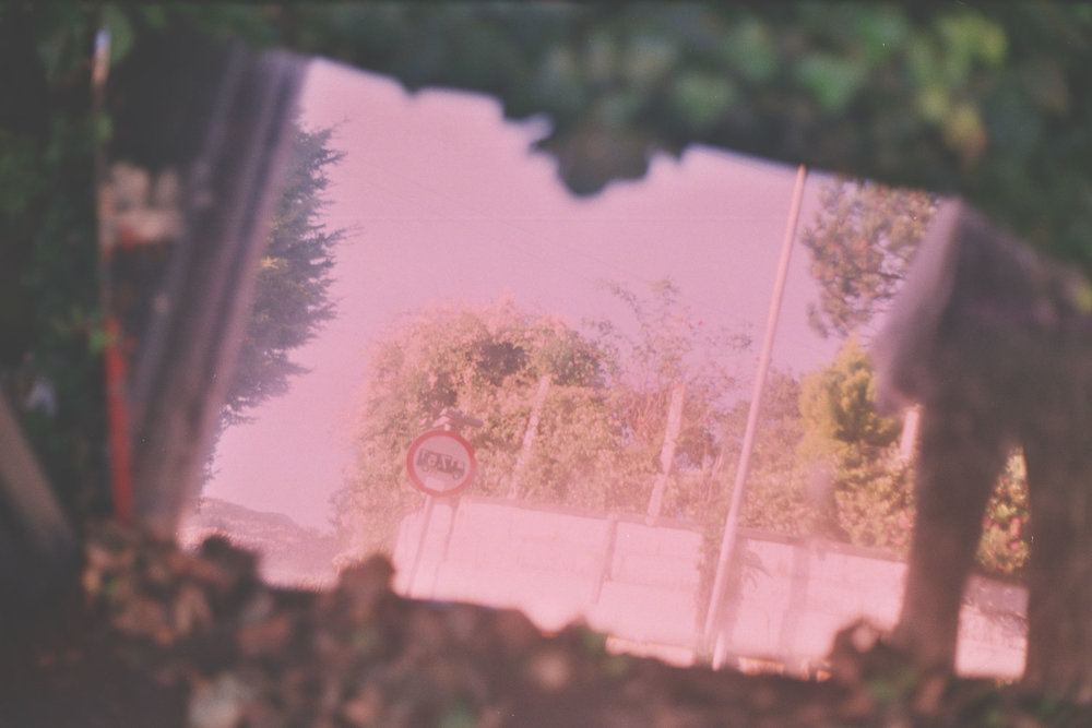 filmphoto.jpg