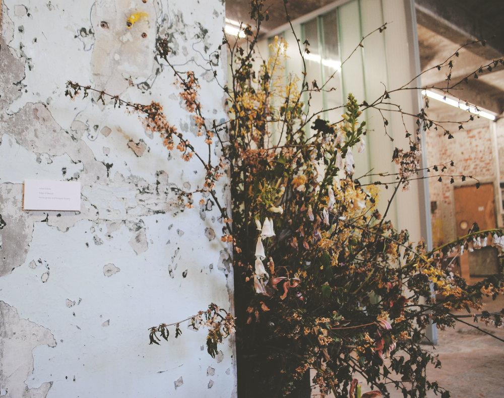 uncommon-or-garden-1.jpg