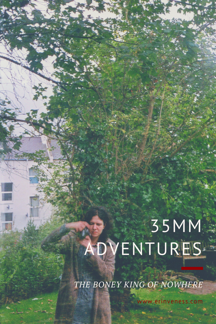 35mm adventures.png