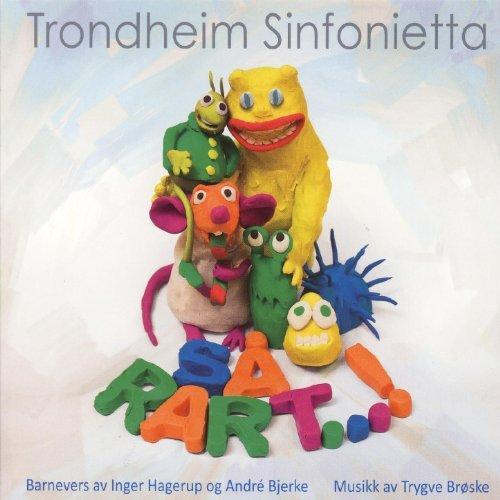 Så Rart - Trondheim Sinfonietta.jpg