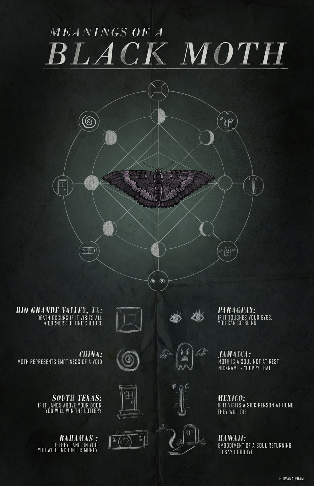black_moth_infographic_final.jpg