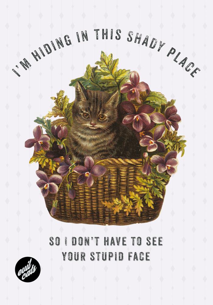 CATS07