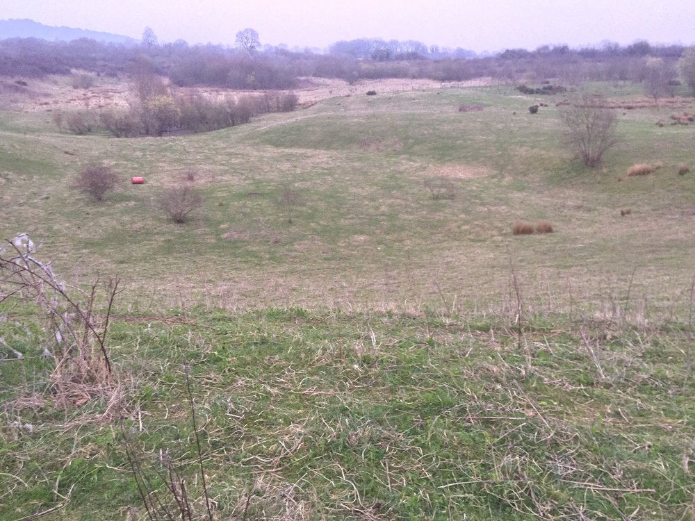 The area to the north of the proposed quarry site in Ightham; this area was quarried some time ago and has not been backfilled to its original state; this is now wasteland and part of the TMBC Local Plan initiative