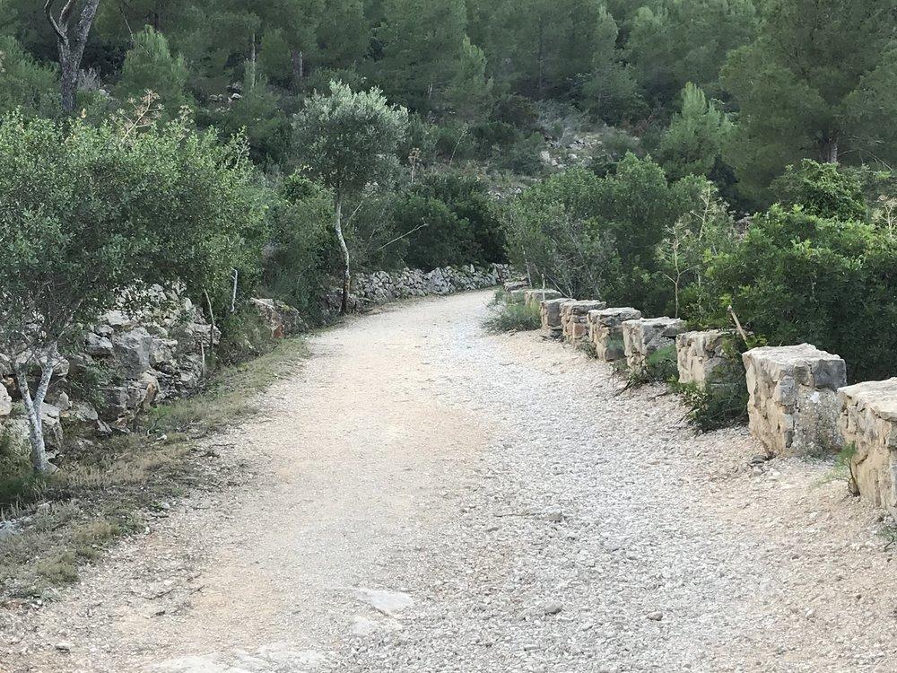 Fina grusvägar med många backar som lämpar sig för backlöpningen finns uppe i bergen.