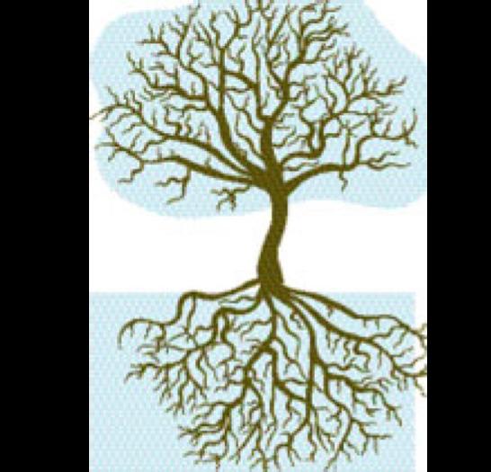 Träd.png