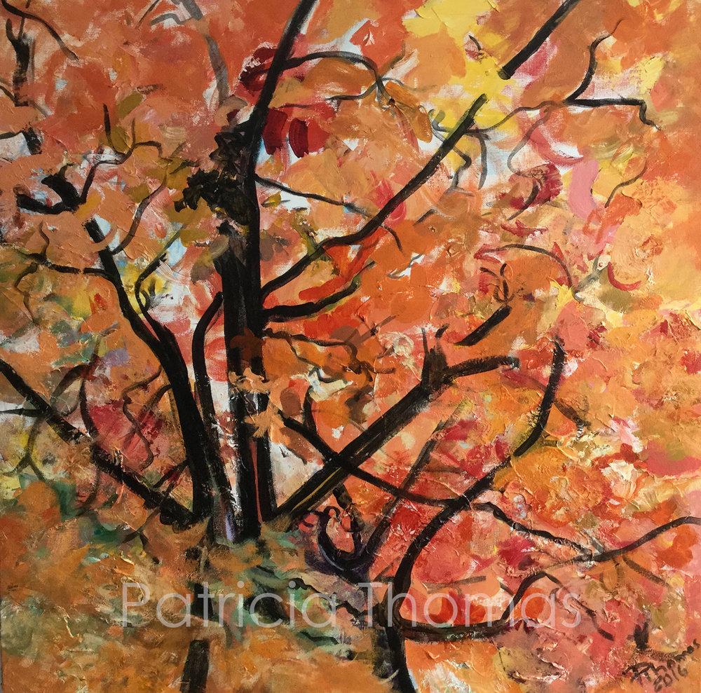 Quebec Autumn Orange Dance.jpg