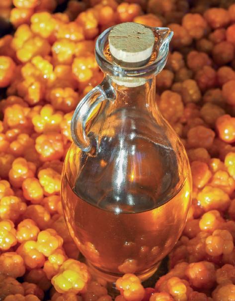 Bærsirup av molte. Foto:Arne Nohr